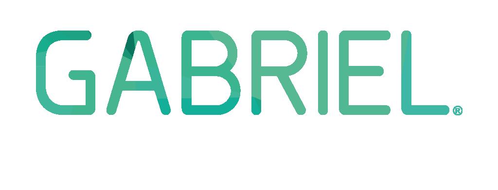 Gabriel Industriereinigung
